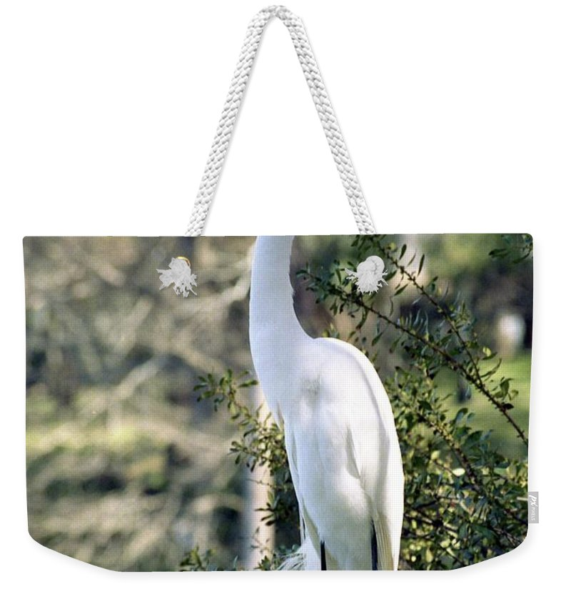 Egret Weekender Tote Bag featuring the photograph Egret 2 by Michael Peychich