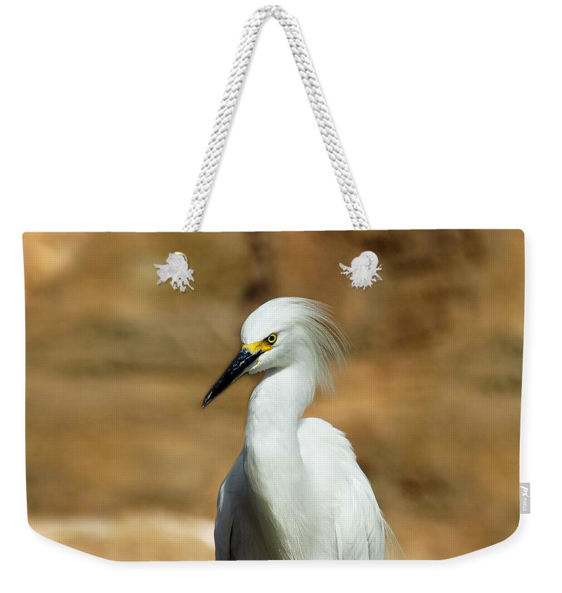 Egret Weekender Tote Bag featuring the photograph Egret 3 by Anthony Jones