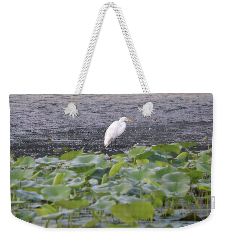 Egret Standing In Lake Weekender Tote Bag featuring the photograph Egret Standing In Lake by Ruth Housley
