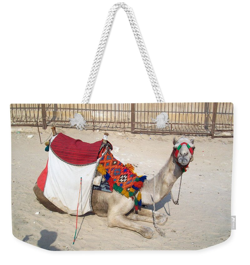 Egypt Weekender Tote Bag featuring the photograph Egypt - Camel by Munir Alawi
