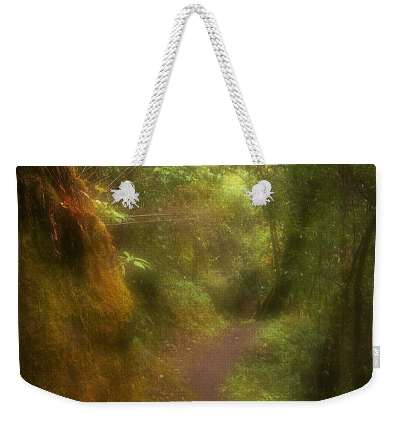 Path Weekender Tote Bag featuring the photograph El Camino by Patrick Klauss
