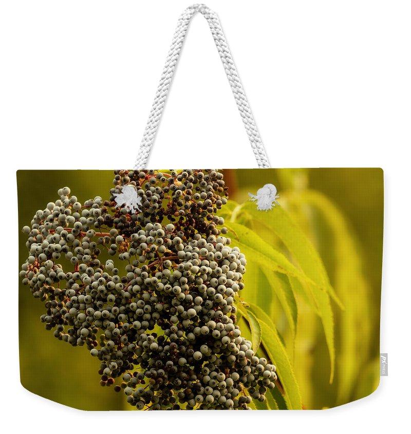 Elderberry Weekender Tote Bag featuring the photograph Elderberry by Belinda Greb