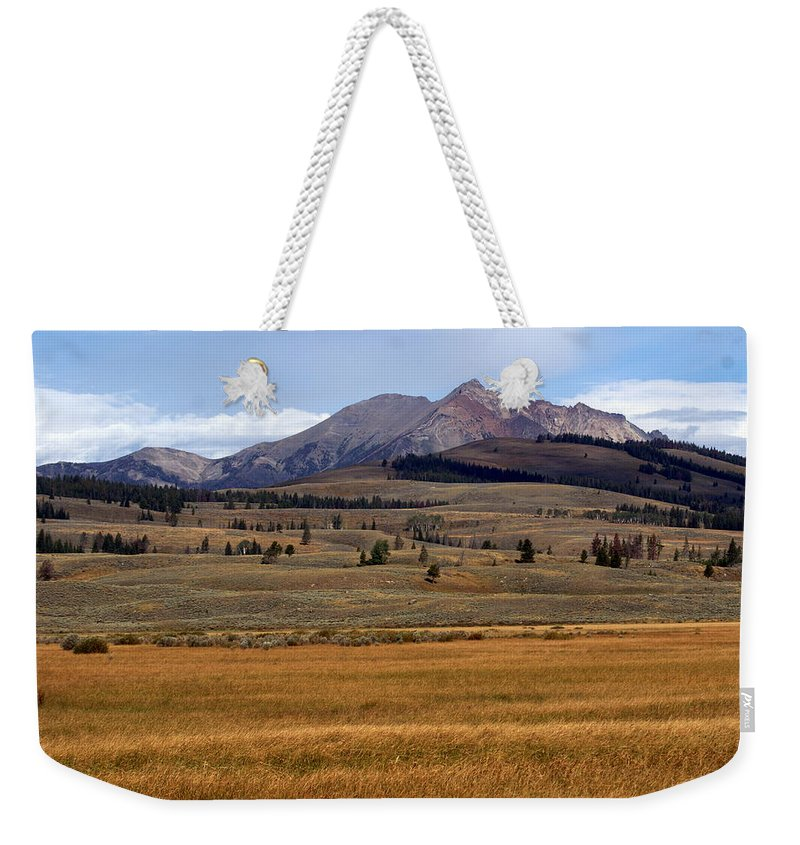 Yellowstone National Park Weekender Tote Bag featuring the photograph Electric Peak 2 by Marty Koch