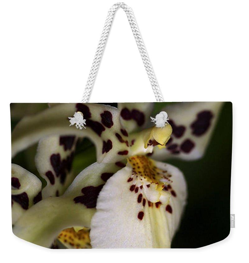 Flower Weekender Tote Bag featuring the photograph Elegance by Deborah Benoit