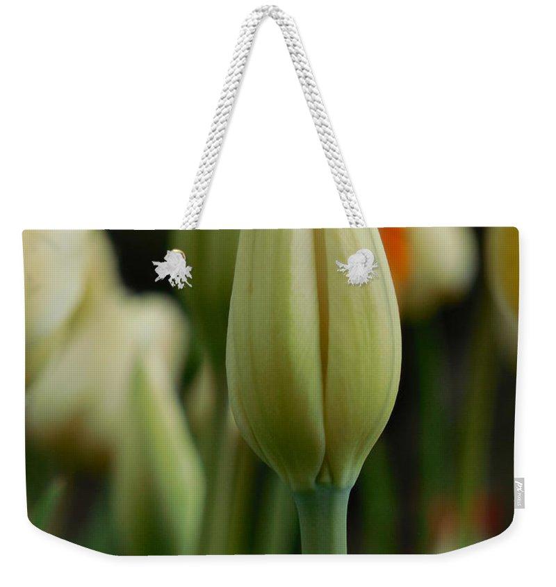 Tulip Weekender Tote Bag featuring the photograph Elegant Tulip by Rowena Throckmorton
