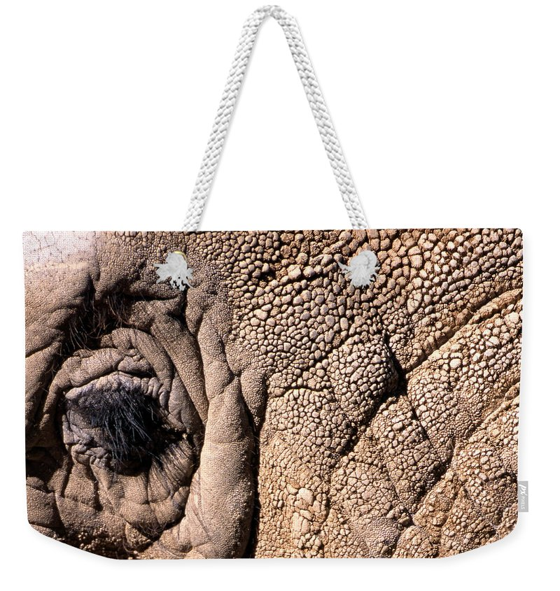 Animal Weekender Tote Bag featuring the photograph Elephant Eye Closeup by John Harmon