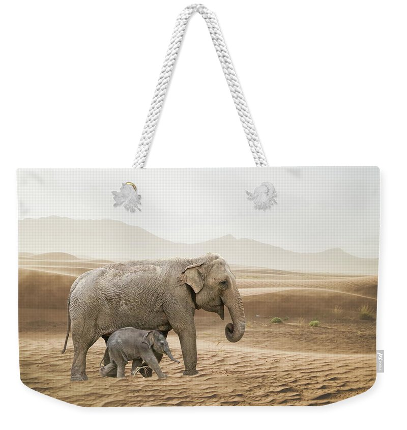 Elephant Weekender Tote Bag featuring the photograph Elephants by Andrea Kollo