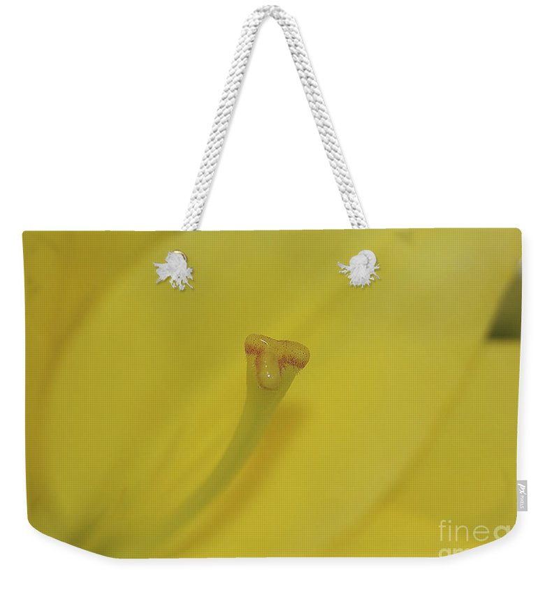 Lilly Weekender Tote Bag featuring the photograph Elusive Lilly by Deborah Benoit