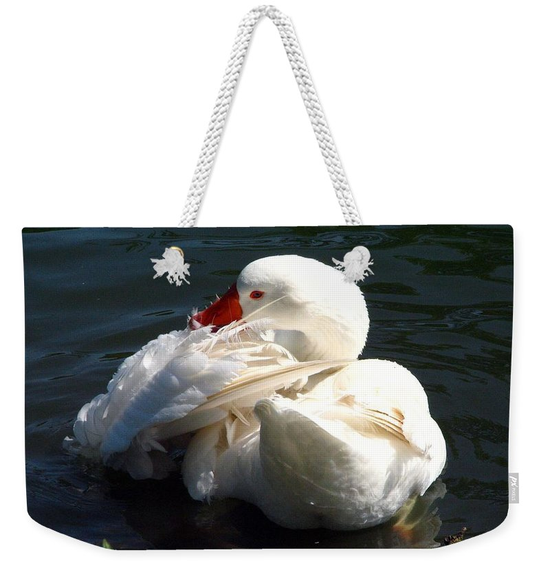 Embden Goose Weekender Tote Bag featuring the photograph Embden Goose 4 by J M Farris Photography
