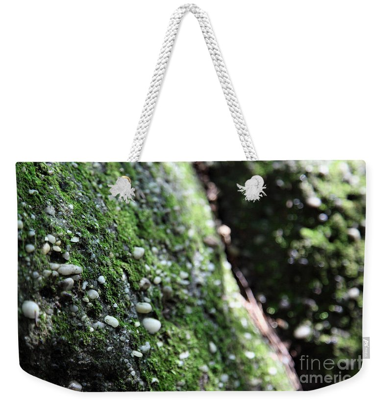 Rocks Weekender Tote Bag featuring the photograph Embedded by Amanda Barcon