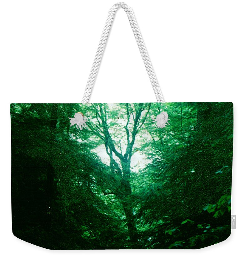 Emerald Weekender Tote Bag featuring the photograph Emerald Glade by Seth Weaver