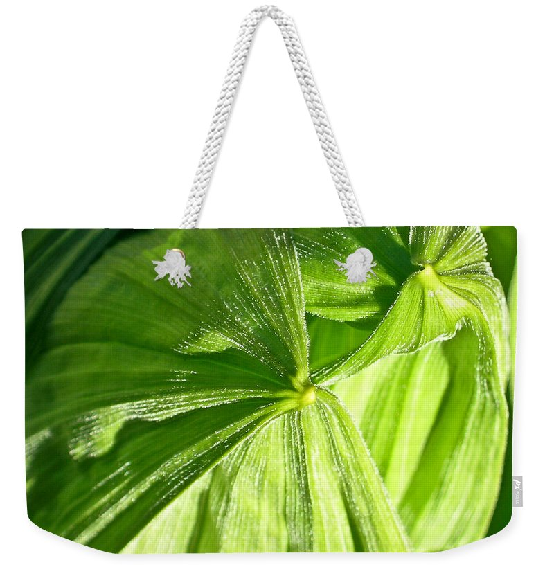 Plant Weekender Tote Bag featuring the photograph Emerging Plants by Douglas Barnett