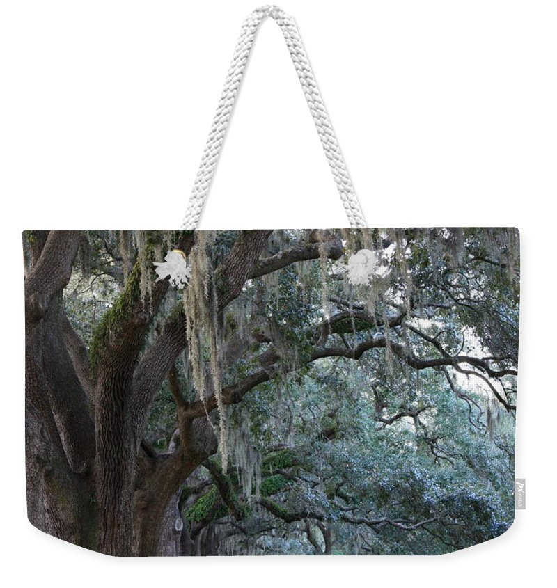 Carol Groenen Weekender Tote Bag featuring the photograph Emmet Park In Savannah by Carol Groenen