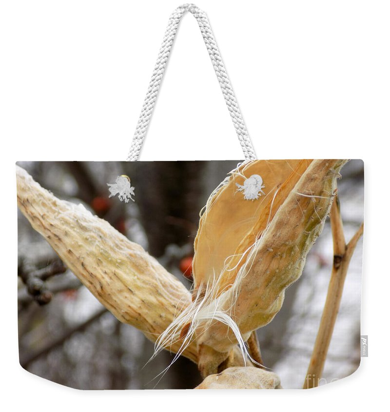 Seed Pod Weekender Tote Bag featuring the photograph Empty Nester by William Tasker