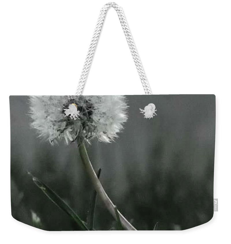 Weekender Tote Bag featuring the photograph Empty Promises Endless Wishes by Lisa Anne Warren
