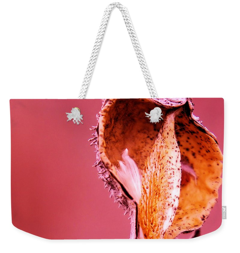 Autumn Weekender Tote Bag featuring the photograph Empty Seed Pod by Jeff Swan
