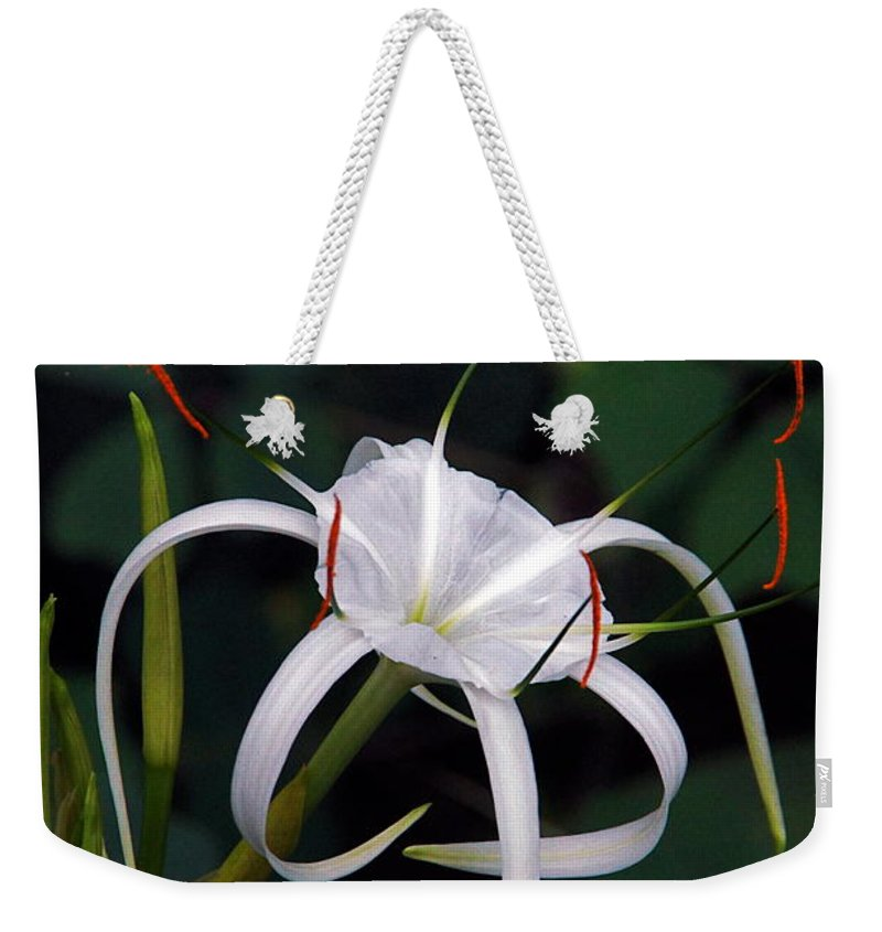 Spider Lily Weekender Tote Bag featuring the photograph En Pointe by Byron Varvarigos