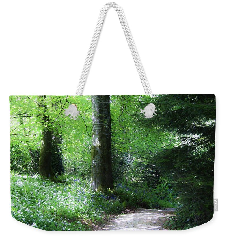 Ireland Weekender Tote Bag featuring the photograph Enchanted Forest At Blarney Castle Ireland by Teresa Mucha