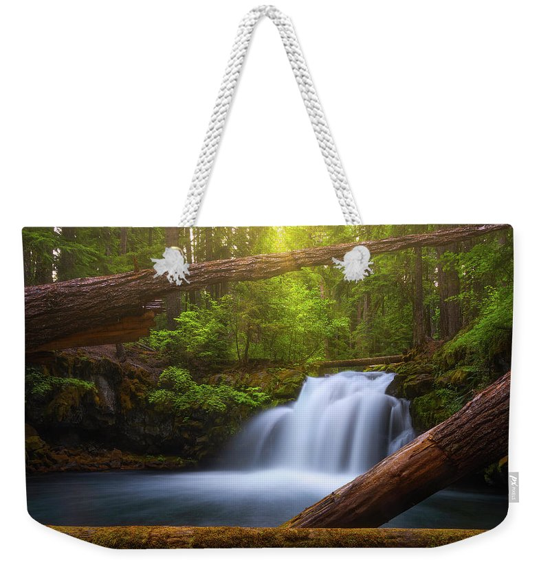 Sunlight Weekender Tote Bag featuring the photograph Enchanted Forest by Darren White