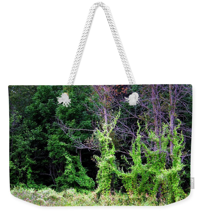 Pine Falls Manitoba Vines Landscape Weekender Tote Bag featuring the photograph Enchanted by Joanne Smoley