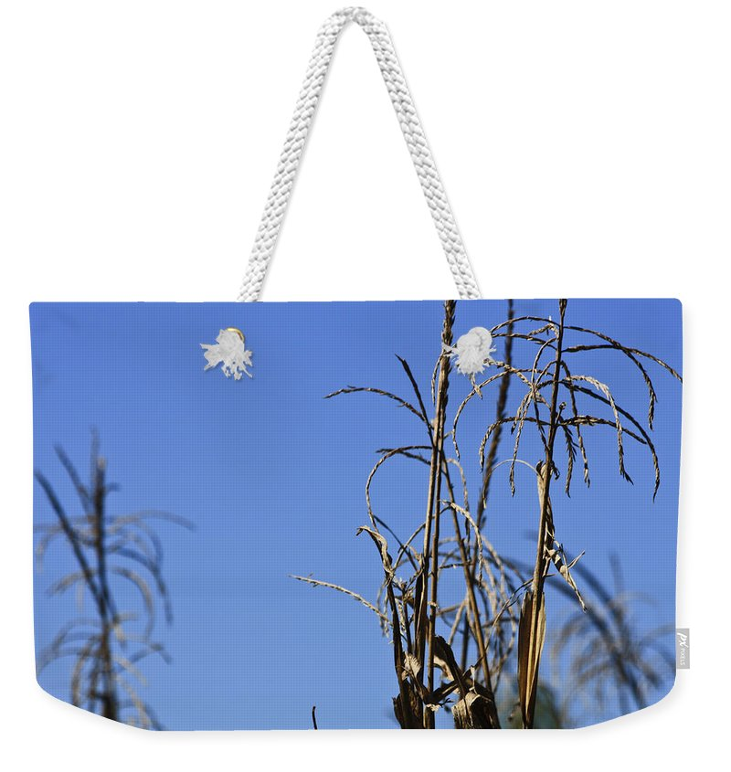 Corn Weekender Tote Bag featuring the photograph End Of Season by Teresa Mucha