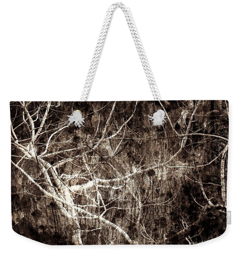 Tree Weekender Tote Bag featuring the photograph Endless by Gaby Swanson