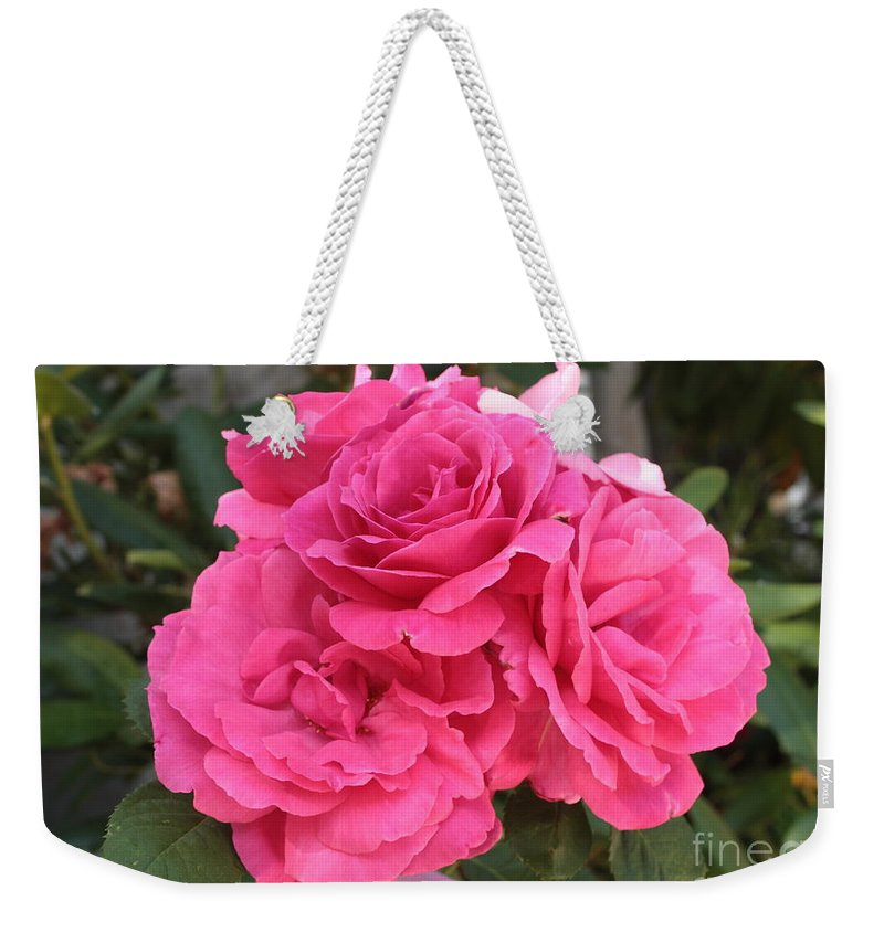 Pink Weekender Tote Bag featuring the photograph Energizing Pink Roses by Carol Groenen