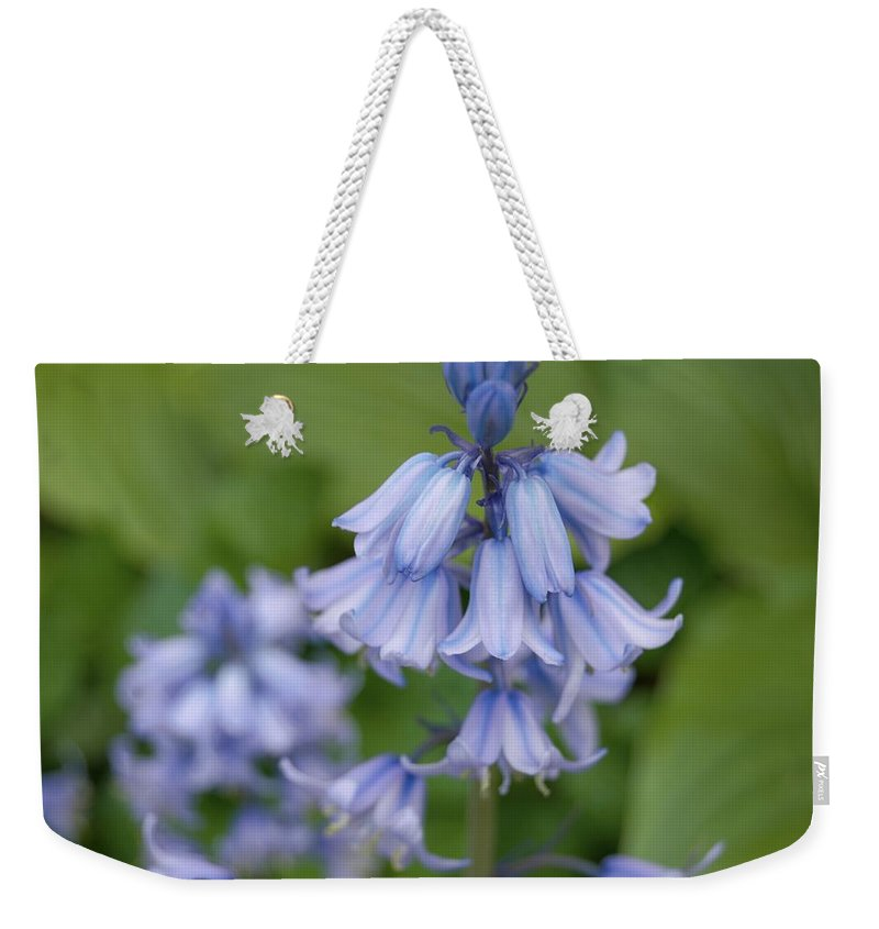Flower Weekender Tote Bag featuring the photograph English Bluebell by Karen Sturgill