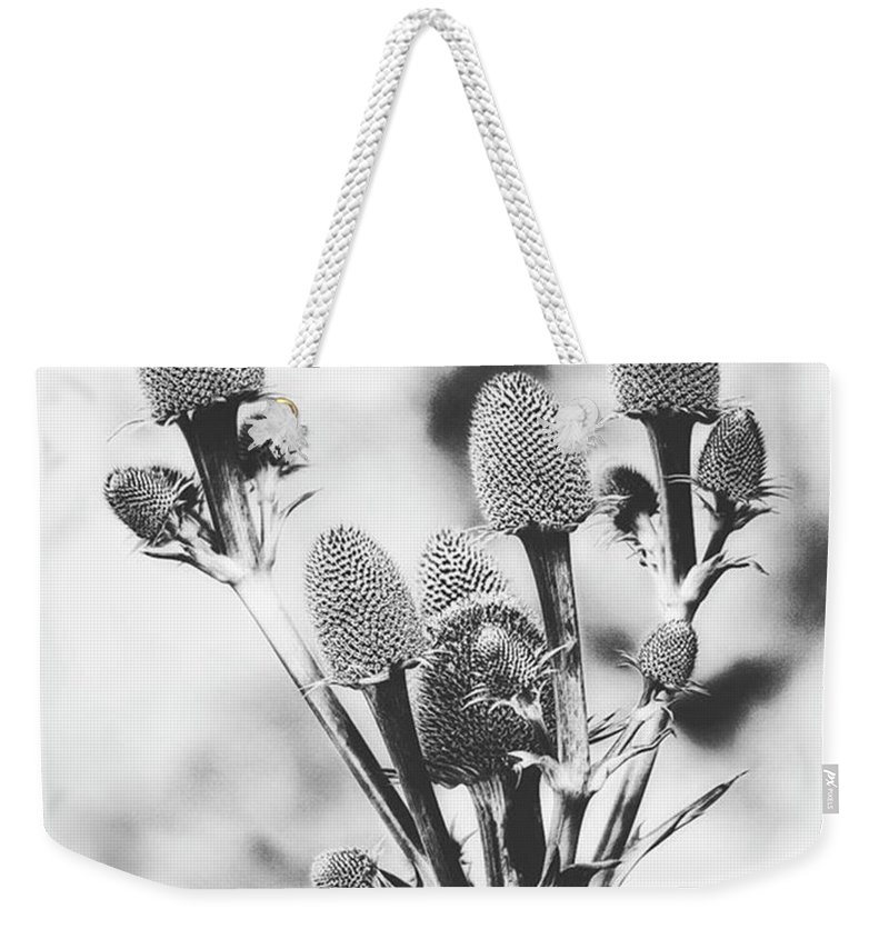 Beautiful Weekender Tote Bag featuring the photograph Eryngium #flower #flowers by John Edwards