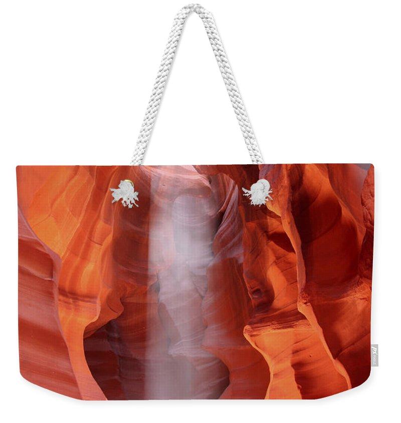 Antelope Weekender Tote Bags