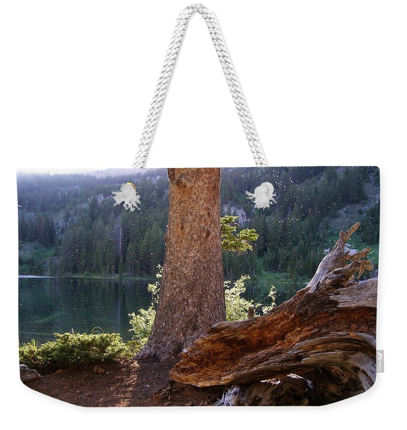 Lake Weekender Tote Bag featuring the photograph Evening At Barstow by DeeLon Merritt