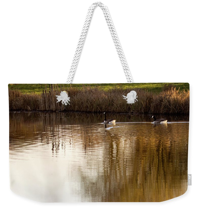 Pond Weekender Tote Bag featuring the photograph Evening By The Pond by Angel Ciesniarska