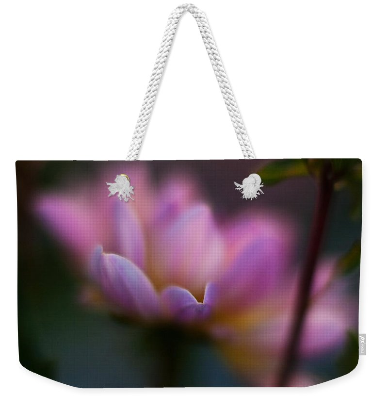 Evening Weekender Tote Bag featuring the photograph Evening Dahlia by Mike Reid