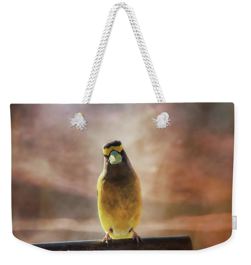 Evening Grosbeak Weekender Tote Bag featuring the photograph Evening Grosbeak On A Spring Day by Sue Capuano