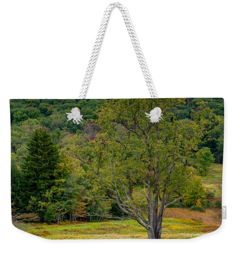 Canaan Valley Weekender Tote Bag featuring the photograph Evening In The Valley by Steve Harrington