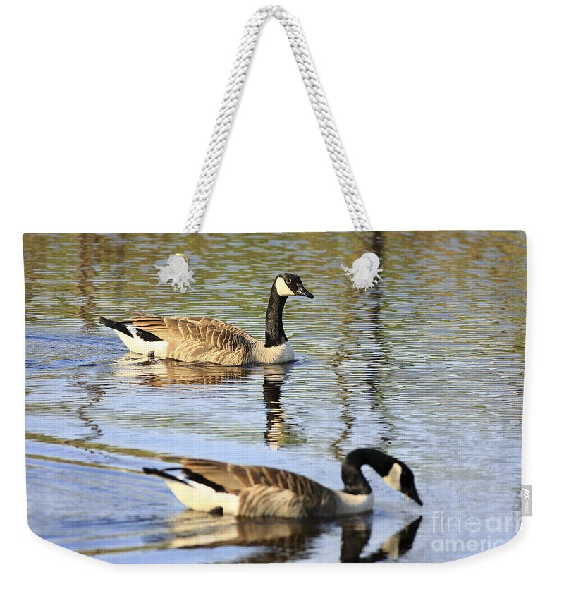 Geese Weekender Tote Bag featuring the photograph Evening Light On Nature by Deborah Benoit