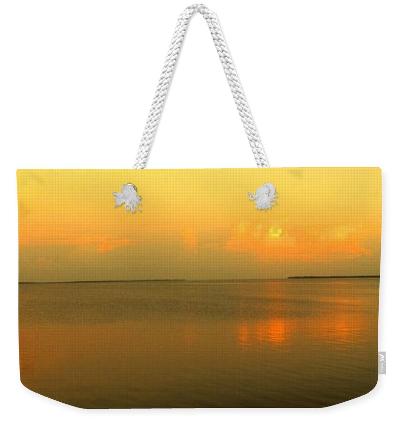 Florida Weekender Tote Bag featuring the photograph Evening Shades by Ian MacDonald