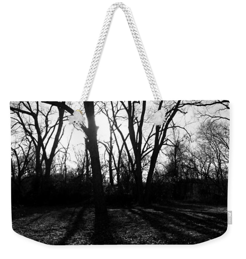 Evening Weekender Tote Bag featuring the photograph Evening Sun Through The Trees by Katherine Nutt