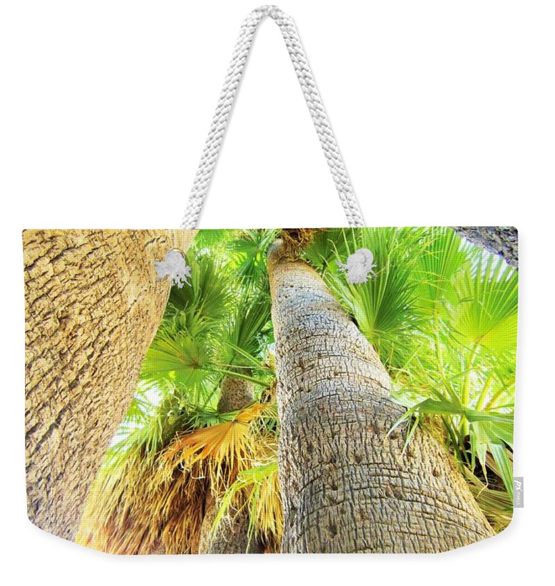Palm Weekender Tote Bag featuring the photograph Ever Upward by Nelson Strong