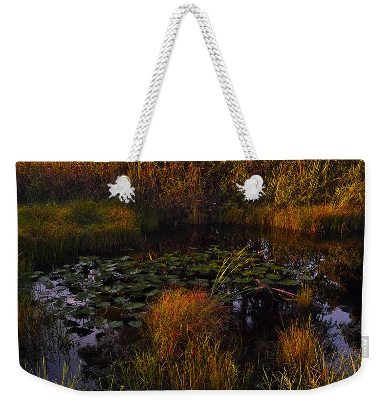 Lilypads Weekender Tote Bag featuring the photograph Everglades Pond by Roberto Aloi