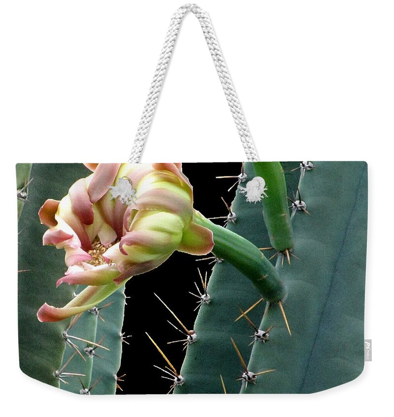 Cactus Weekender Tote Bag featuring the photograph Every Cactus Flower Has It's Thorns by Chris Mercer