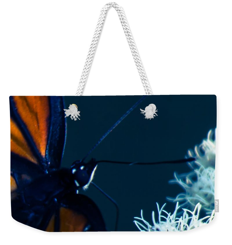 Viceroy Weekender Tote Bag featuring the photograph Everything I Have by Kristin Hunt