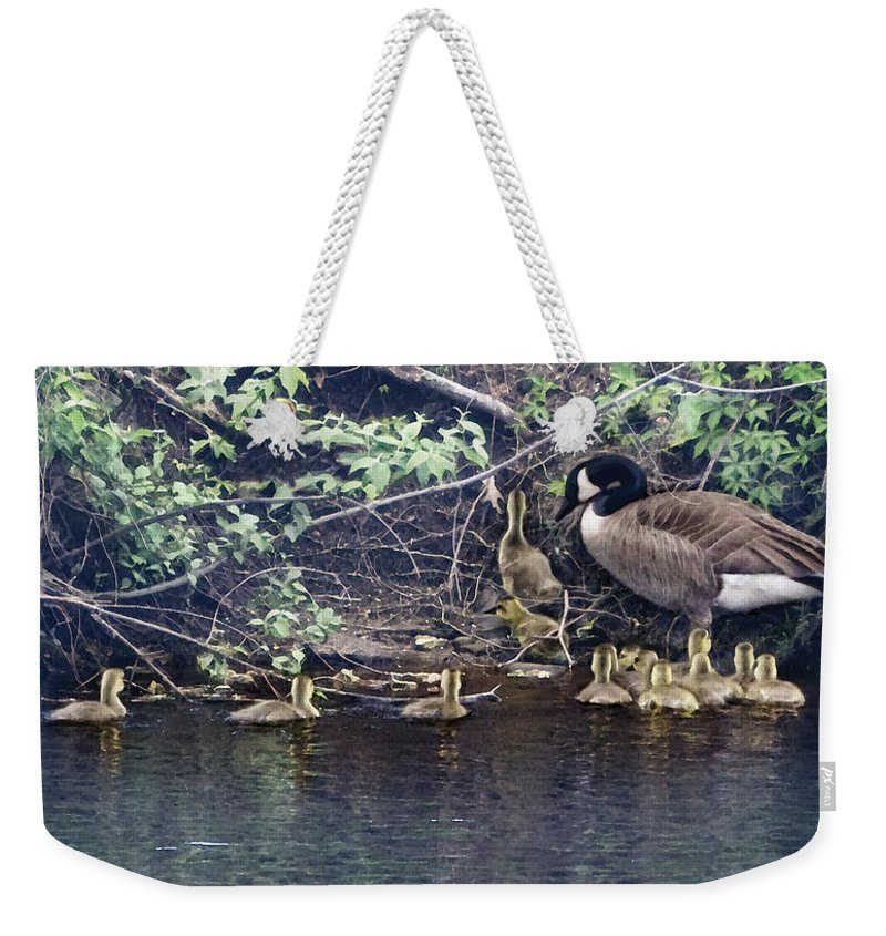 Baby Geese Weekender Tote Bag featuring the photograph Exit by Barbara Hymer