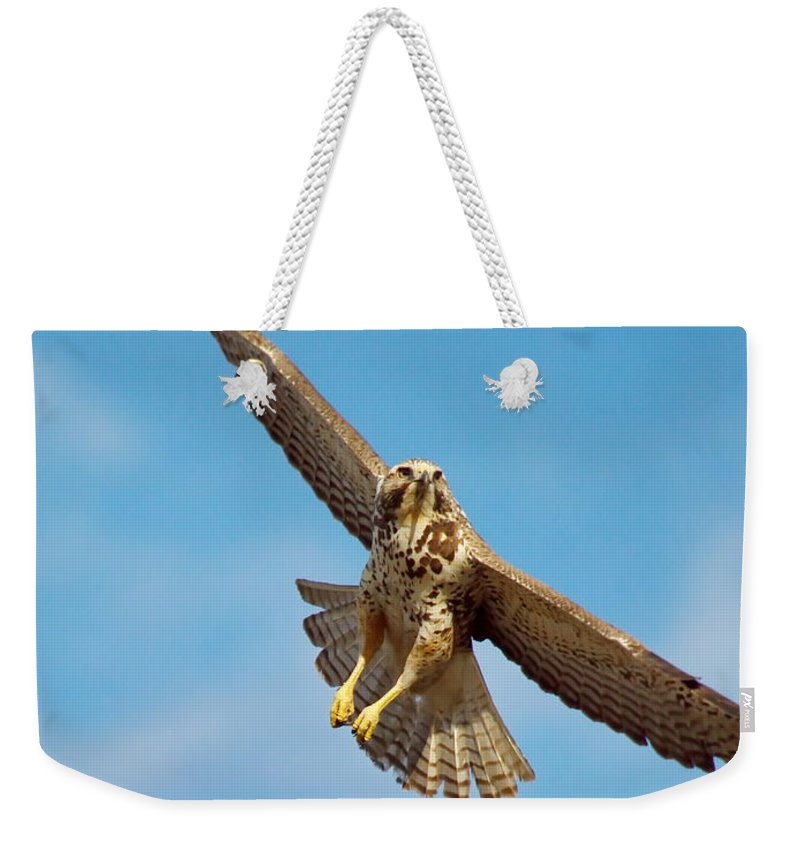 Nature Weekender Tote Bag featuring the photograph Exit Screen Right by Crystal Massop