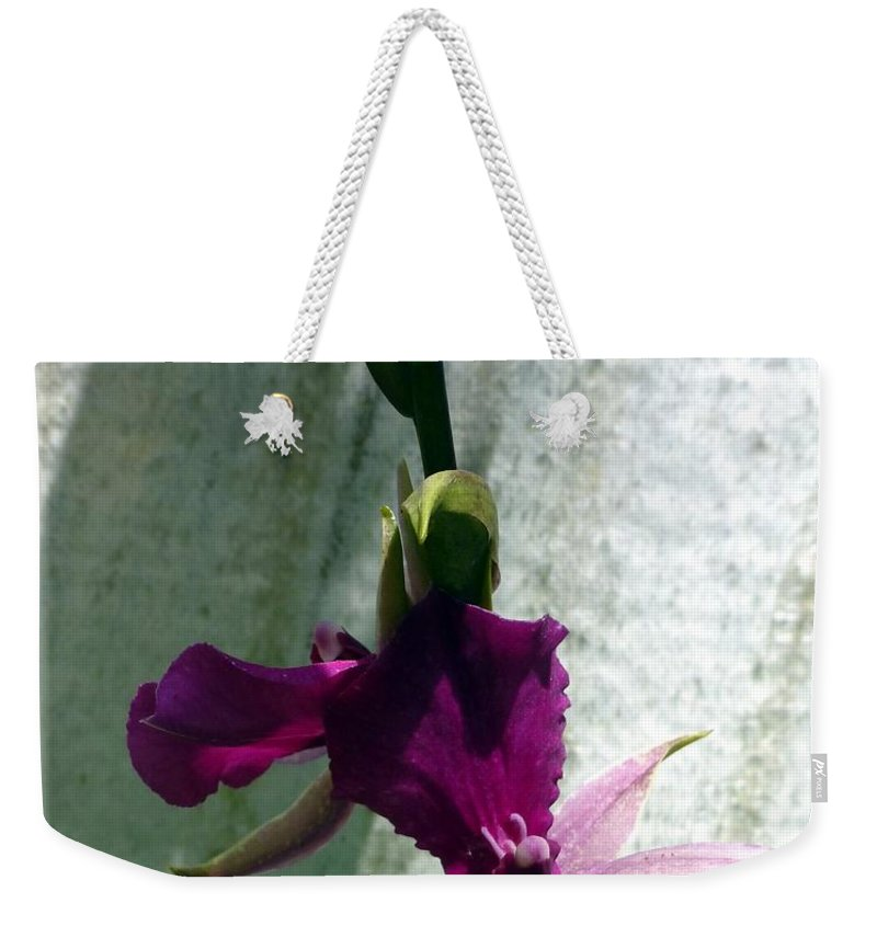 Happy Birthday Weekender Tote Bag featuring the photograph Exotic Purple Birthday Wishes by Barbie Corbett-Newmin