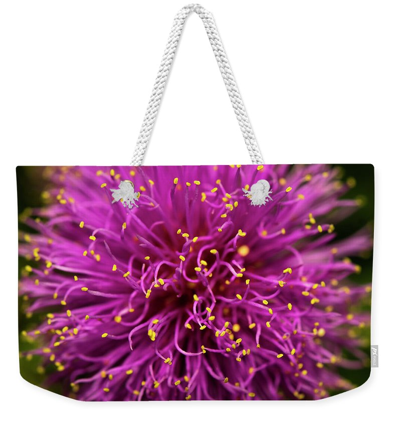 Macro Micro Macrophotography Microphotography Closeup Weekender Tote Bag featuring the photograph Exploding Yellow by Wattie Wildcat
