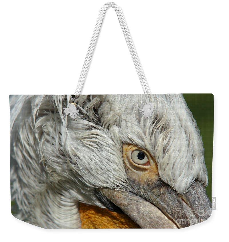 Dalmatian Pelican Weekender Tote Bag featuring the photograph Eye by Michal Boubin