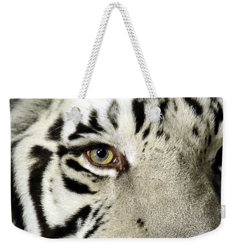 White Tiger Weekender Tote Bag featuring the photograph Eye Of The Tiger by Nadalyn Larsen