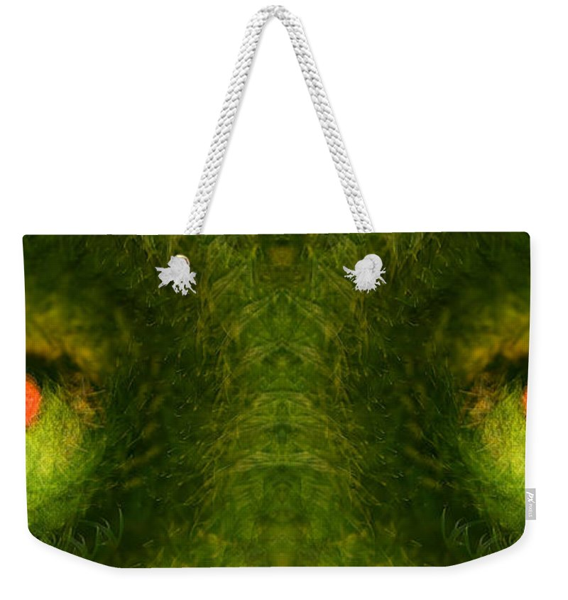 Panorama Weekender Tote Bag featuring the photograph Eyes Of The Garden-2 by Doug Gibbons