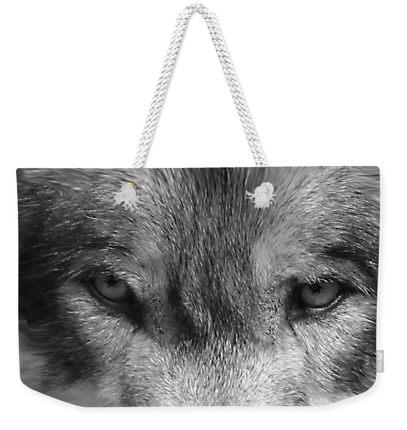 Wolf Canid Canus Lupis Wildlife Grey Gray Timberwolf Animal Mammal Photograph Photograhy Eyes Black White Desaturate Weekender Tote Bag featuring the photograph Eyes Of The Wild by Shari Jardina